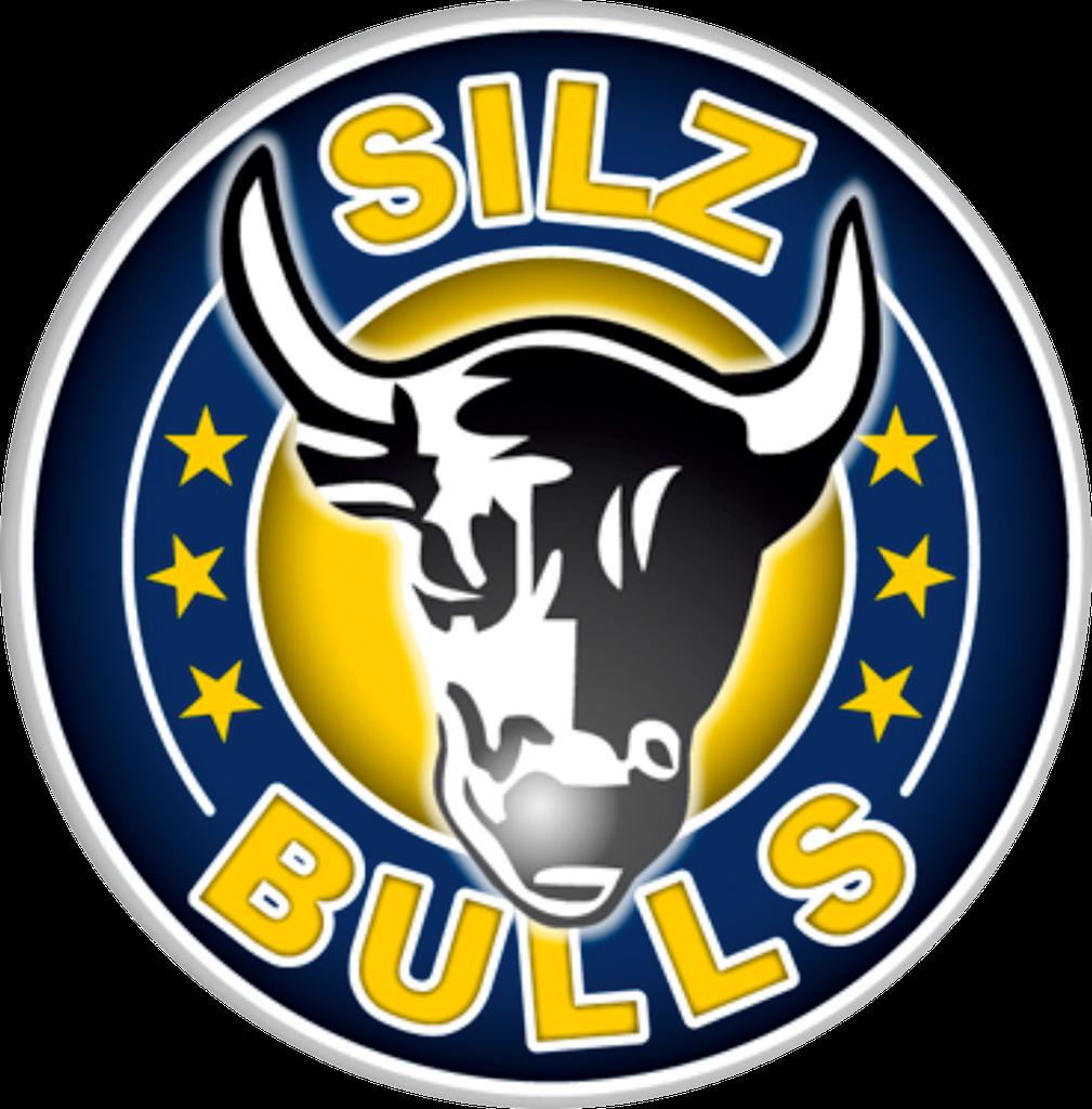 Bildergebnis für sv silz logo